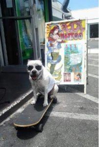 Skateboarding ICE