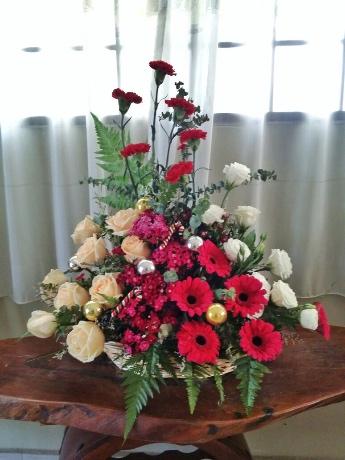 Elisa's Christmas flowers